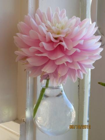 I made the lightbulb bud vase, not the flower, silly!